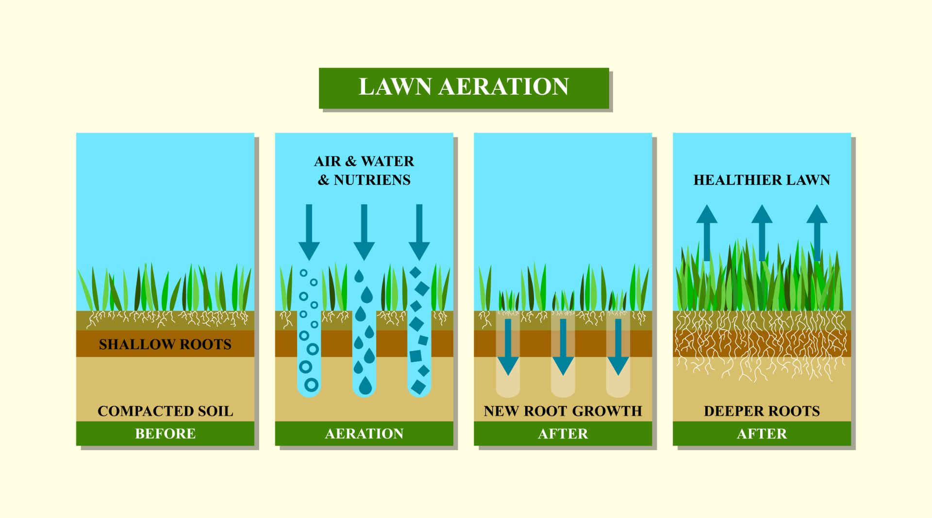 Nature Pro Lawn Care - Alabaster Helena Calera Pelham Alabama - Lawn Aeration Process
